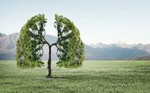 CO2 METER voor ventilatie en ventilator