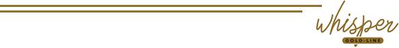 Fluisterstille buisventilator Whisper Gold line